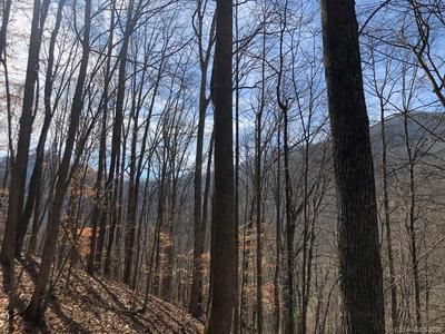99999 PAINT FORK ROAD, Barnardsville, NC 28709 - Photo 2