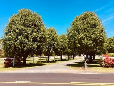 391 CEDAR WOODS RD, Taylorsville, NC 28681 - Photo 2