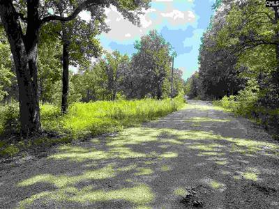 TBD JONS ROAD, Kershaw, SC 29067 - Photo 2