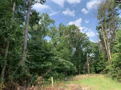 SW TROTTER ROAD, Hopkins, SC 29061 - Photo 1