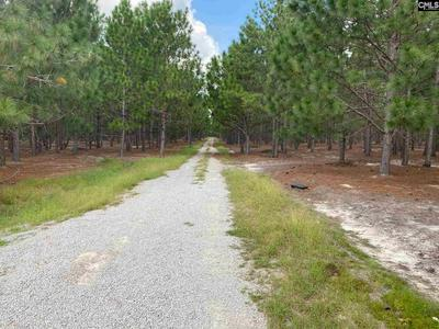 210 LIBERTY HILL ROAD, Gilbert, SC 29054 - Photo 2