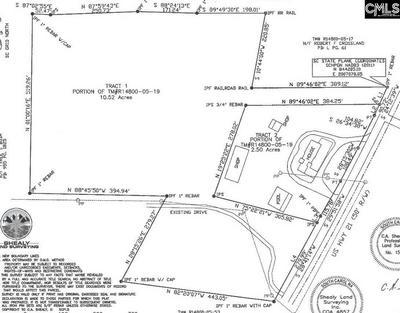 TBD WILSON BOULEVARD, Blythewood, SC 29016 - Photo 2