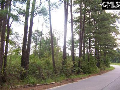 1676 BASE HILL RD, Hopkins, SC 29061 - Photo 2