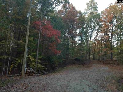 109 MYRTLE LN LOT 16, Blair, SC 29015 - Photo 2