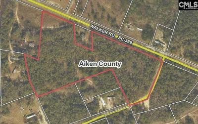HWY 389 WALKER ROAD, Salley, SC 29137 - Photo 2