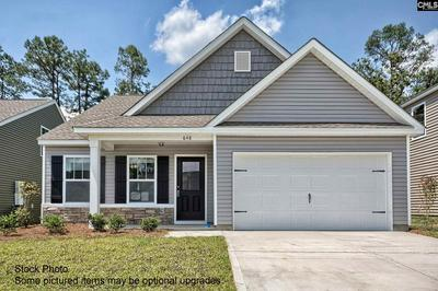 260 ELSOMA DR, Chapin, SC 29036 - Photo 1
