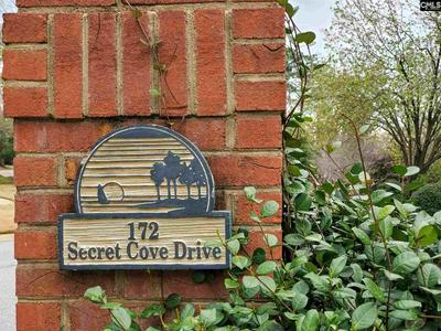 172 SECRET COVE DR, Lexington, SC 29072 - Photo 2