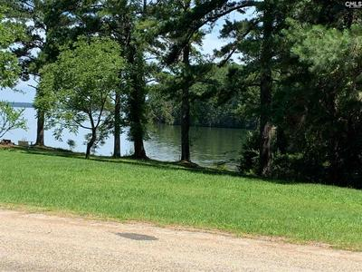 LAKEVIEW DRIVE, Jenkinsville, SC 29065 - Photo 1