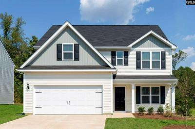 305 COMMON REED DRIVE, Gilbert, SC 29054 - Photo 1
