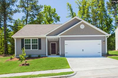 145 COMMON REED DR, Gilbert, SC 29054 - Photo 1