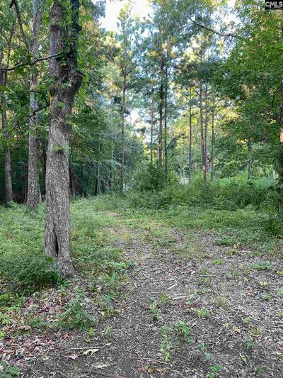 101 POINT ST, Chapin, SC 29036 - Photo 1