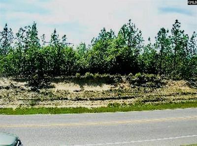 TBD EDMUND HIGHWAY, Pelion, SC 29123 - Photo 2