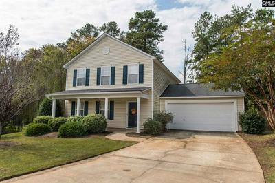 14 REDBRUSH CT, Chapin, SC 29036 - Photo 2