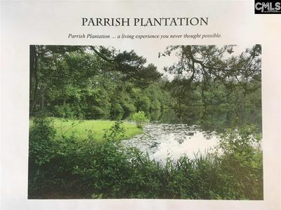 106 PARRISH POND DR # 48, West Columbia, SC 29170 - Photo 2