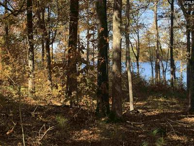 2292 SCURRY ISLAND RD # 59, Chappells, SC 29037 - Photo 2