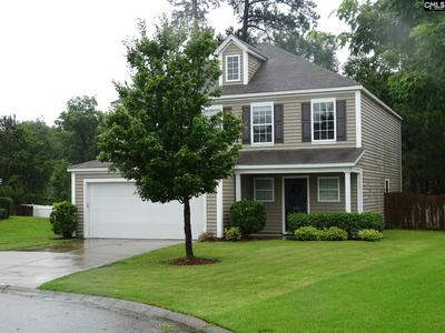 148 PENNSYLVANIA CT, Chapin, SC 29036 - Photo 2