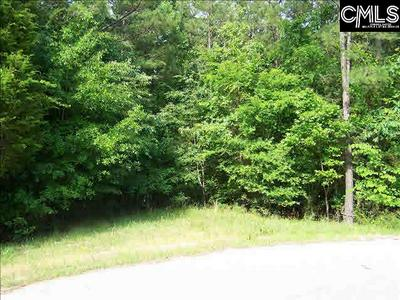 271 GOODLETT LN LOT 6, Blair, SC 29015 - Photo 2