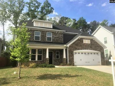 374 HOLLOW COVE RD, CHAPIN, SC 29036 - Photo 1