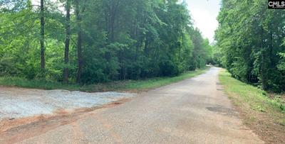 LAKEVIEW DRIVE, Jenkinsville, SC 29065 - Photo 2