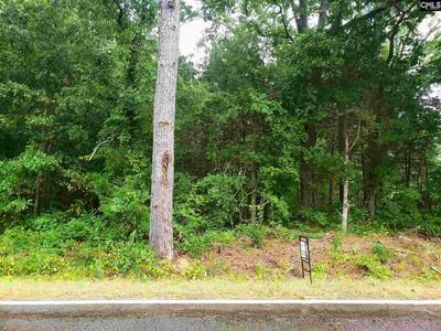 OLD CHAPPELLS FERRY ROAD, Saluda, SC 29138 - Photo 2