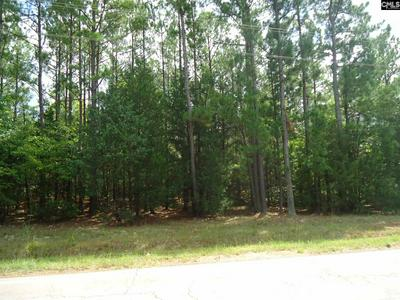 TBD COLE TRESTLE ROAD # C, Blair, SC 29015 - Photo 2