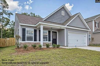 260 ELSOMA DR, Chapin, SC 29036 - Photo 2