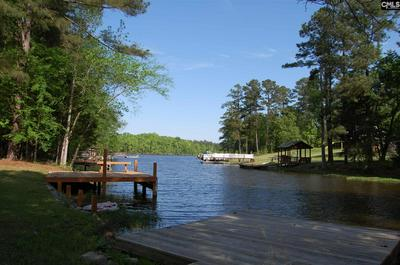 412 NEWBERRY DR, Chapin, SC 29036 - Photo 2