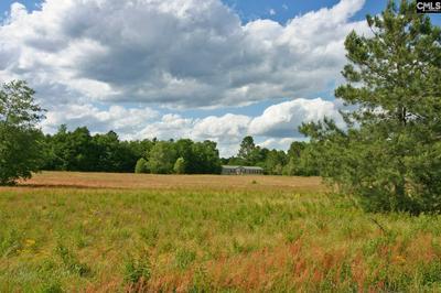 301 POINSETTIA RD, Wagener, SC 29164 - Photo 1