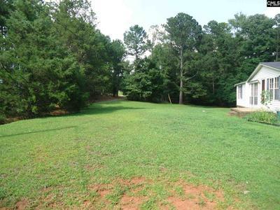 969 JENKINSVILLE RD, Jenkinsville, SC 29065 - Photo 2