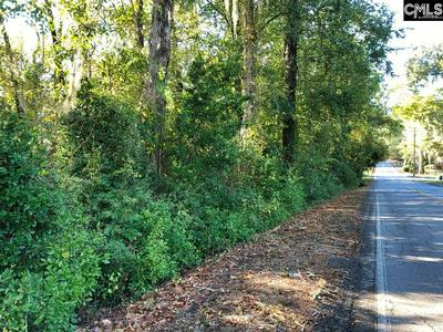 0 RIVERSIDE DRIVE, Orangeburg, SC 29115 - Photo 2