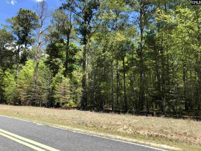 0 PINEY BRANCH ROAD, Eastover, SC 29044 - Photo 1