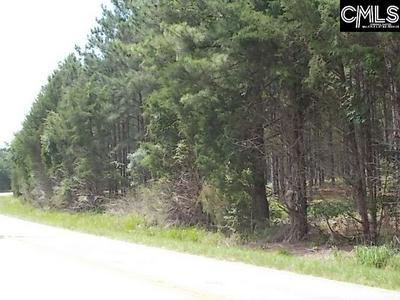 2185 SMALLSTOWN RD, Winnsboro, SC 29180 - Photo 2