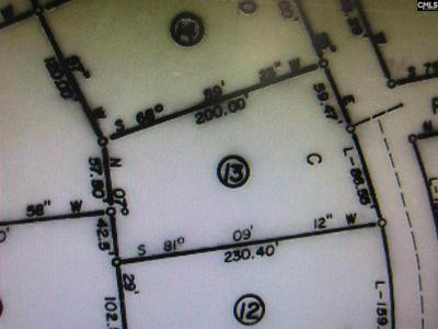 823 HUNTER HILL RD, CAMDEN, SC 29020 - Photo 1