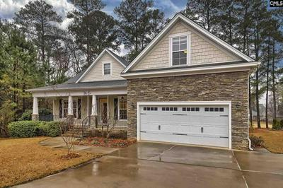 213 POINTE OVERLOOK DR, Chapin, SC 29036 - Photo 2