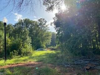 LOT 16 COUNTY LINE ROAD, MIDLAND, GA 31820 - Photo 1