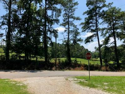 0 PEBBLEBROOK ROAD, Woodbury, GA 30293 - Photo 1