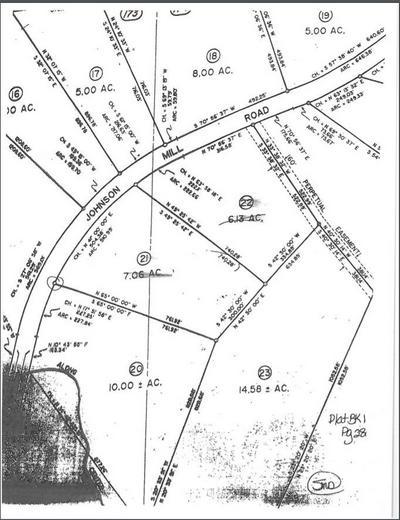 0 JOHNSON MILL ROAD, HAMILTON, GA 31811 - Photo 2