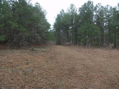 573 GA HIGHWAY 137, CUSSETA, GA 31805 - Photo 2