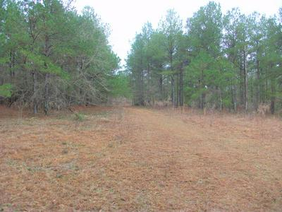 573 GA HIGHWAY 137, CUSSETA, GA 31805 - Photo 1