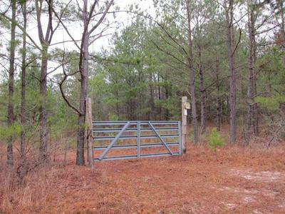 0 HIGHWAY 137, CUSSETA, GA 31805 - Photo 1