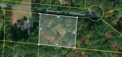 27 BUCKEYE LOOP N, MIDLAND, GA 31820 - Photo 2