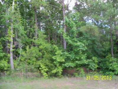 0 OLD LOUVALE ROAD, CUSSETA, GA 31805 - Photo 2