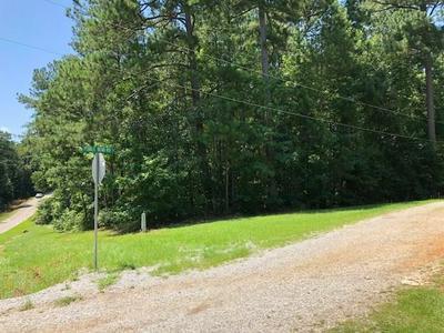 0 PEBBLEBROOK ROAD, Woodbury, GA 30293 - Photo 2