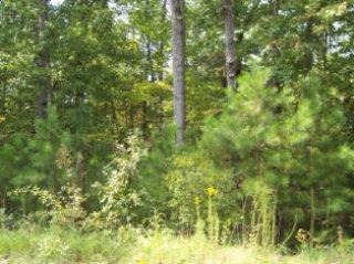37 MOBLEY RD, HAMILTON, GA 31811 - Photo 1