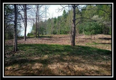 0 MAINESVILLE ROAD W, Junction City, OH 43748 - Photo 2