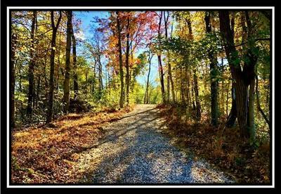 0 COUNTY ROAD 9, NEW MATAMORAS, OH 45767 - Photo 1