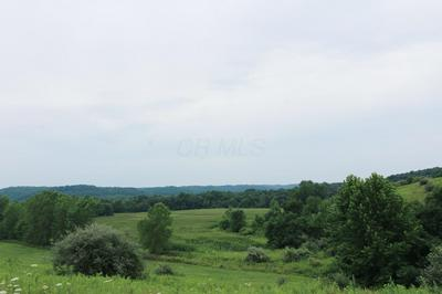 0 STATE RD 93, Kimbolton, OH 43749 - Photo 2