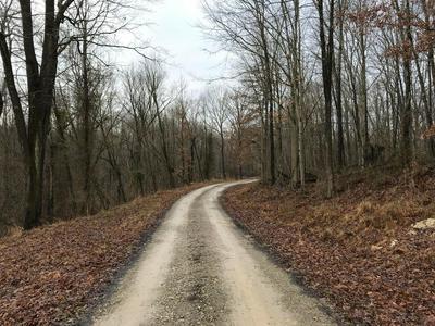 33986 W W BUCKINGHAM RD ROAD, LOGAN, OH 43138 - Photo 2