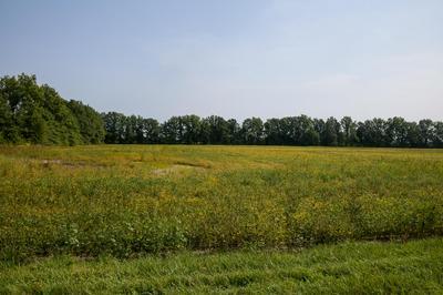 0 OSBORNE, Richwood, OH 43344 - Photo 1