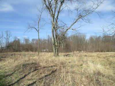 2317 COUNTY ROAD 194, Fredericktown, OH 43019 - Photo 2